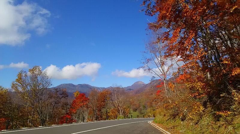 秋のドライブイメージ